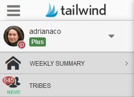 Tailwind tab